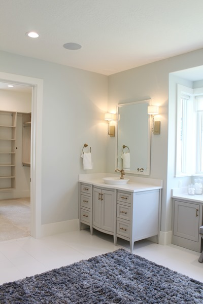 master bath and vanity paint color